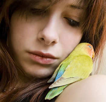 Bird_Love