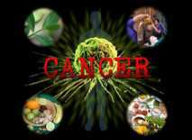cancer-treatment-through-ayurveda-featured-image