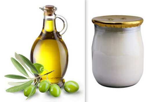 curd-and-olive-oil-for-skin-care