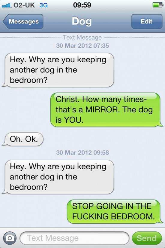 40 Hilarious Conversations between Dog and Owner, If He ...
