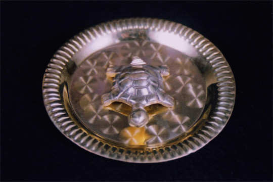 metal-turtle-and-plate