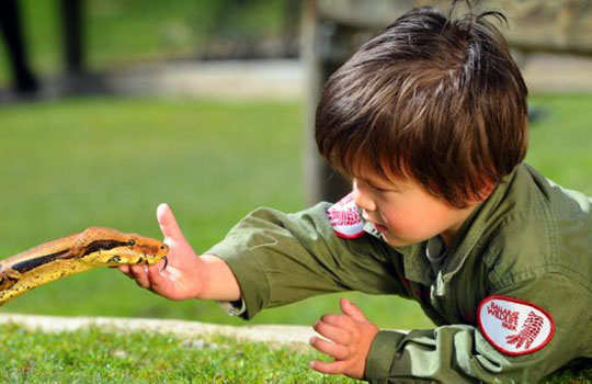 Charlie--parker-3-year-old-play-with-reptiles-2