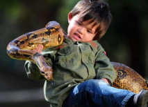 Charlie--parker-3-year-old-play-with-reptiles-4