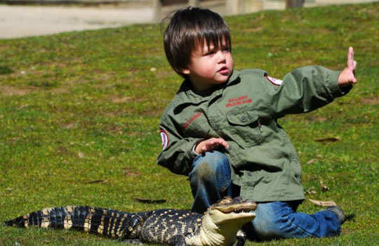 Charlie--parker-3-year-old-play-with-reptiles-5