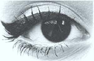 kitten-eye