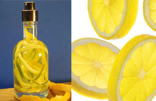 home-remedies-for-fleas-citrus-spray
