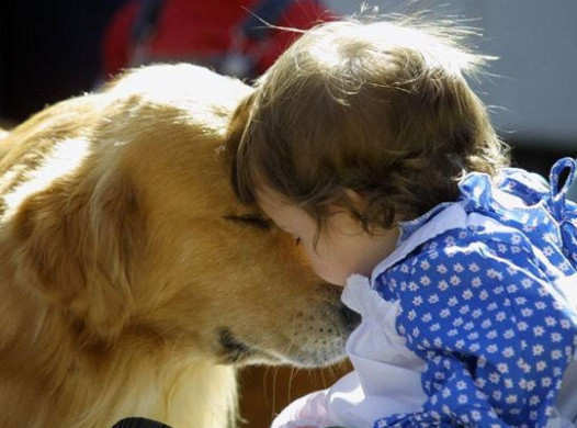 incredible-pictures-of-cutest-pets-6
