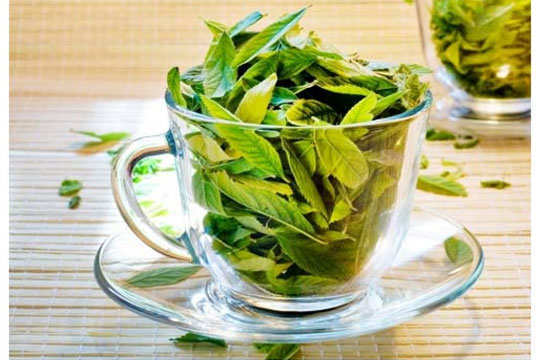lip-care-neem-leaves