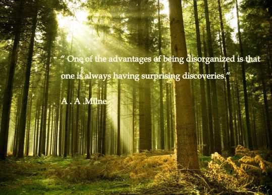 quotes-to-live-by-for-a-better-life-15