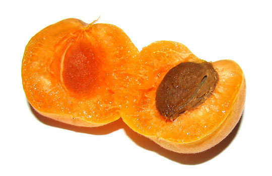 stretch-marks-home-remedies-apricot