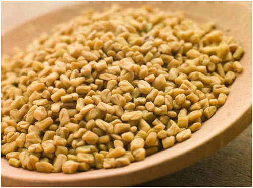 Fenugreek-Seeds1