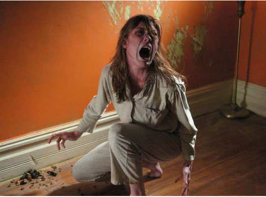 horror-movies-based-on-real-stories-4