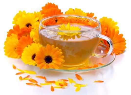 marigold-and-calendula-Tea