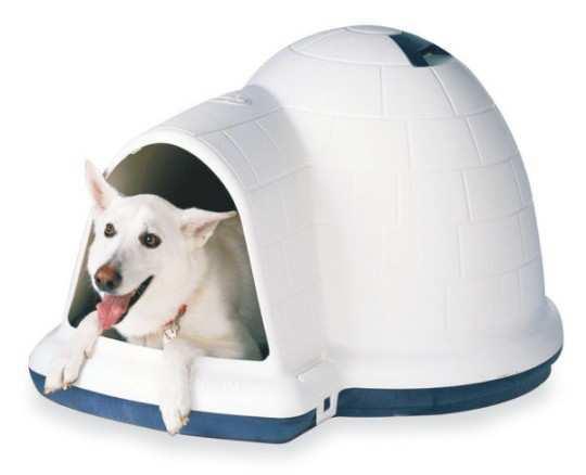 Petmate-indigo-dog-house