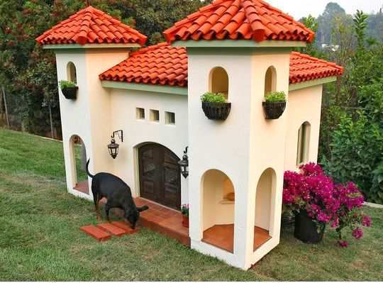 Amazing Super Cool And Stylish Doghouses Wetellyouhowwetellyouhow Largest Home Design Picture Inspirations Pitcheantrous