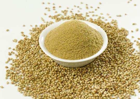 coriender-powder