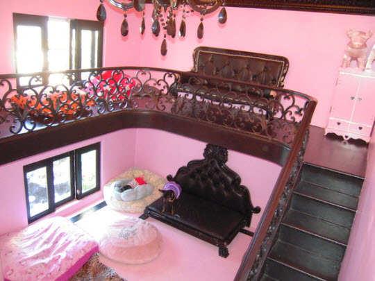 dog-house-interior
