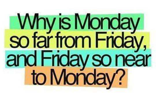 why-is-monday