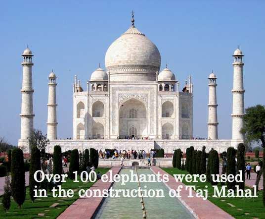 Taj-Mahal-fact