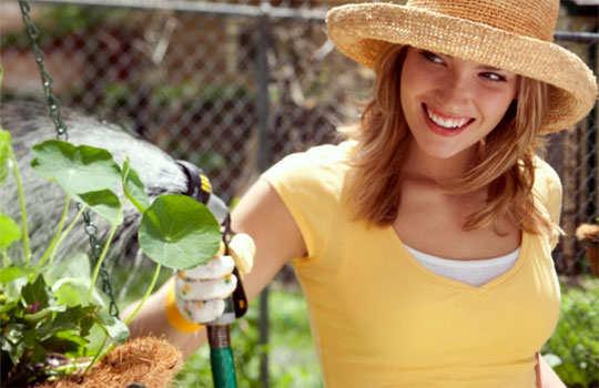 gardening-tips-ft