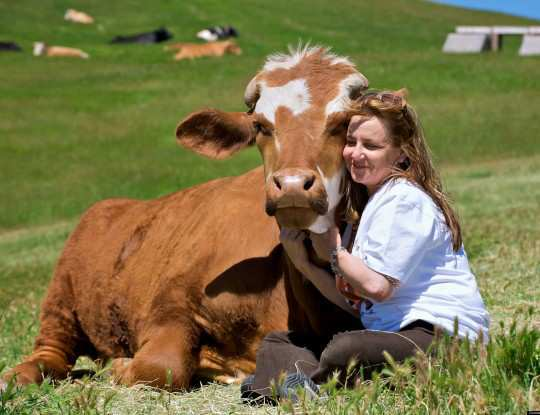 girl-hugging-cow