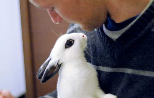 man-with-Rabbit