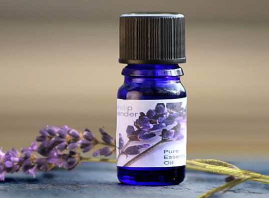 Lavender-Oil-1