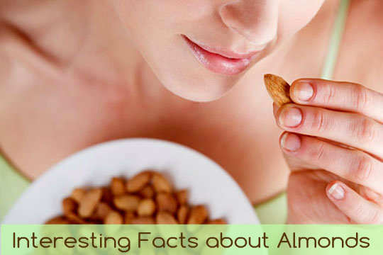 almond-fun-interesting-facts-1-ft