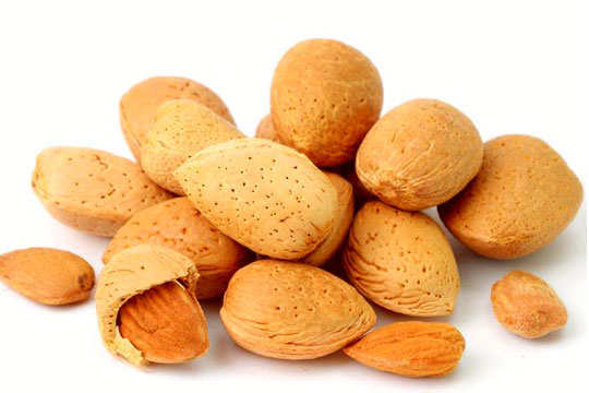 almond-fun-interesting-facts-12
