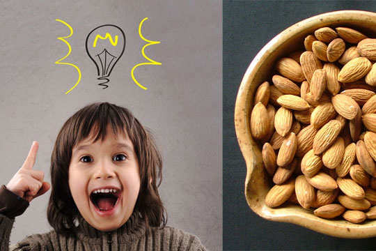 almond-fun-interesting-facts-6