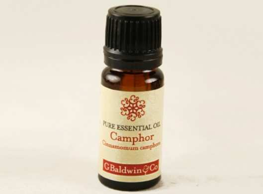 camphor-oil