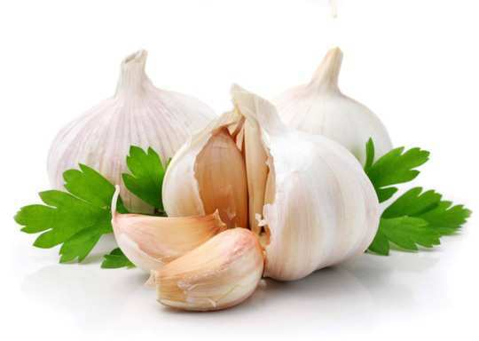 garlic-oil-for-ear