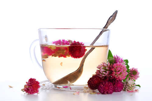 red-clover-tea
