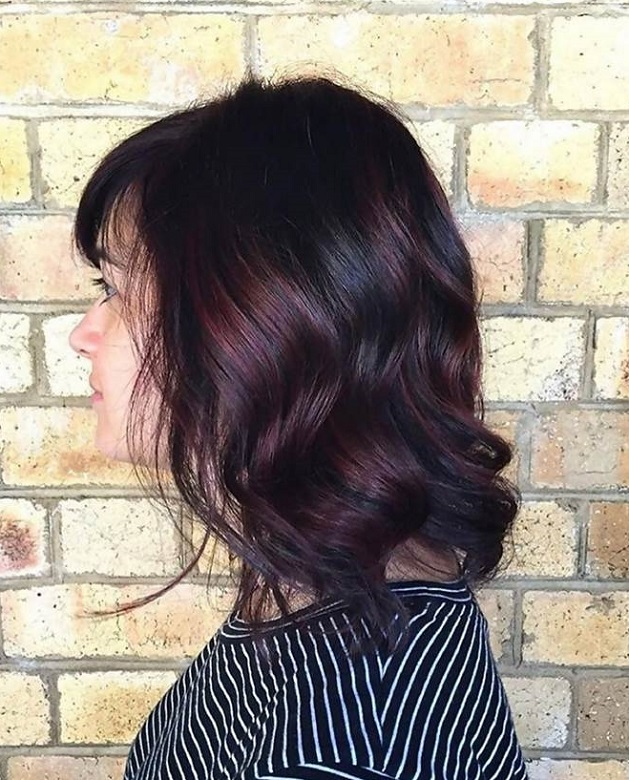 Dark Plum Brown Hair Color