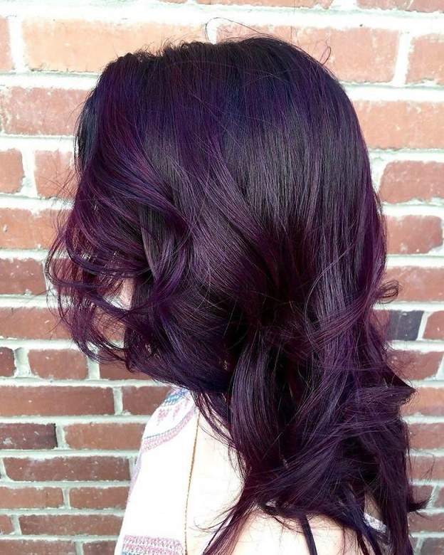 6 Extravagant Plum Brown Hairstyles To Explore Wetellyouhow